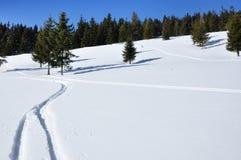 Pistas del esquí en nieve del polvo Imágenes de archivo libres de regalías