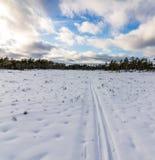 Pistas del esquí en paisaje del invierno en Noruega Foto de archivo libre de regalías