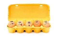 Pistas del huevo Imagen de archivo libre de regalías