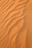 Pistas del lagarto en la arena del desierto Fotos de archivo libres de regalías