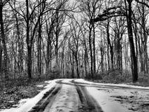 Pistas del neumático en el camino nevado a través del bosque fotografía de archivo libre de regalías