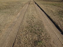 Pistas del neumático en fango secado en campo herboso Foto de archivo