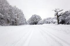 Pistas del neumático en la nieve Imagen de archivo