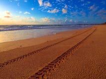 Pistas del neumático en la playa Imagen de archivo libre de regalías
