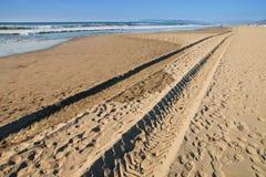 Pistas del neumático en la playa Foto de archivo libre de regalías