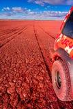 Pistas del neumático en un lago seco Fotografía de archivo
