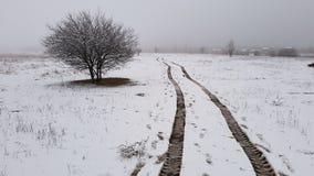 Pistas del neumático sobre campo nevoso imagen de archivo