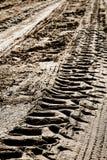 Pistas del neumático de la rueda del alimentador en fango seco en el camino de tierra Foto de archivo libre de regalías