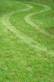 Pistas del neumático en la hierba Fotos de archivo libres de regalías