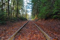 Pistas del otoño Fotos de archivo libres de regalías