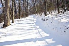 Pistas del trineo en la nieve Imagenes de archivo