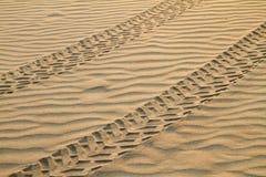 Pistas en la arena imagen de archivo