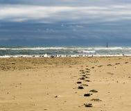 Pistas en la arena Fotos de archivo libres de regalías