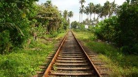 Pistas en la isla de Sri Lanka Fotografía de archivo