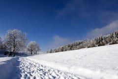 Pistas en la nieve fresca Imagenes de archivo