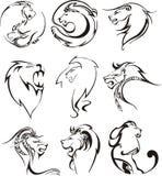 Pistas estilizadas del león Imagen de archivo libre de regalías
