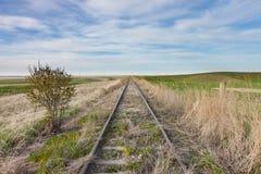 Pistas ferroviarias demasiado grandes para su edad vacías en pradera canadiense fotografía de archivo libre de regalías