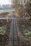 Pistas ferroviarias entre la naturaleza imagen de archivo