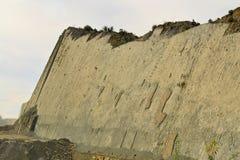 Pistas fosilizadas de la huella del dinosaurio en Bolivia imagen de archivo