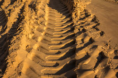 Pistas grabadas en relieve del excavador del rastro en la arena mojada Fotografía de archivo