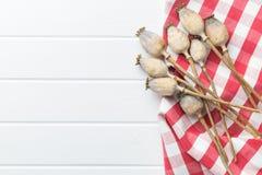 Pistas secadas de la amapola Foto de archivo libre de regalías