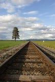 Pistas a través del campo. Fotografía de archivo libre de regalías