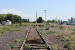 Pistas viejas del tren Imagen de archivo libre de regalías
