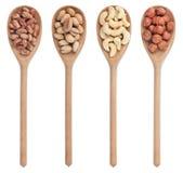 pistascher, cashews och hasselnötter Arkivbild
