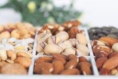 Pistazien, Erdnüsse, Walnüsse, Mandeln, Haselnüsse, Paranüsse, Kürbiskern und Acajoubäume, Nahaufnahme Lizenzfreie Stockfotos