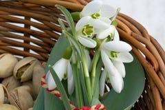 Pistazien und Blumen Stockbild
