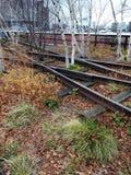 Piste abbandonate che passano alta linea parco in New York Immagini Stock