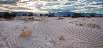 Piste attraverso la sabbia Fotografia Stock Libera da Diritti