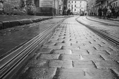 Piste bagnate del tram a Leopoli Fotografia Stock