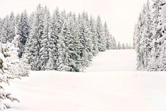 Piste de neige de ski de forêt de l'hiver de montagne Images libres de droits