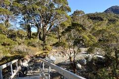 Piste de Routeburn, Nouvelle Zélande Photos libres de droits