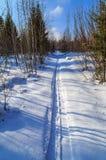 Piste de ski dans la forêt Images stock