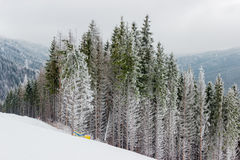 Piste de ski parmi la forêt impeccable par temps nuageux Photo libre de droits