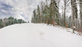 Piste del esquí entre el bosque en estación de esquí en Cárpatos Imágenes de archivo libres de regalías
