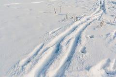 Piste del pattino del paese trasversale in neve di recente caduta Immagini Stock