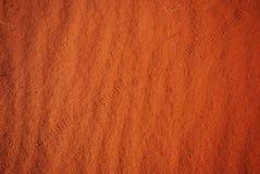 Piste del serpente e della lucertola sulla duna di sabbia Fotografia Stock