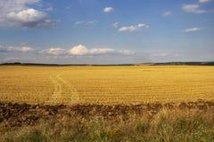 Piste del trattore attraverso un campo di stoppie di giugno immagine stock