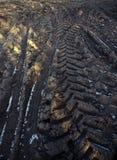 Piste del trattore sul campo congelato, textu del fondo di agricoltura Immagini Stock Libere da Diritti