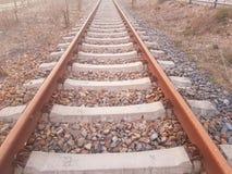 Piste del treno alla stazione in cattivo Saarow in Germania fotografia stock