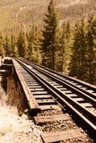 Piste del treno di ferrovia attraverso la campagna Immagini Stock Libere da Diritti