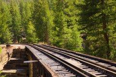 Piste del treno di ferrovia attraverso la campagna Fotografia Stock Libera da Diritti
