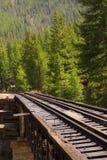 Piste del treno di ferrovia attraverso la campagna Fotografia Stock