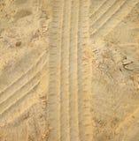 Piste dell'automobile nello strato della sabbia Fotografia Stock Libera da Diritti