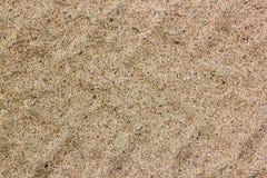 Piste della gomma di automobile sulla sabbia asciutta, strada, fondo astratto, materiale di struttura Pista di Tiro sulla sabbia  fotografia stock
