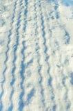 Piste della gomma in neve Fotografia Stock Libera da Diritti