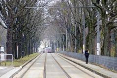 Piste della linea tranviaria al vicolo separato in un vicolo Immagini Stock